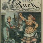 Stereotyping the Irish Maid, 1883